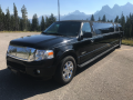 12 Passenger Ford Expedition SUV Stretch Limousine
